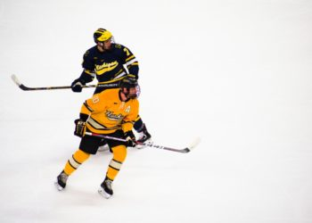 Beyond Physical – The Importance of Mental Endurance in Hockey