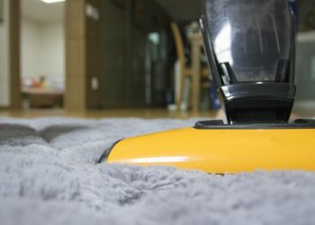 Reasons You Should Consider Hiring Professional Carpet Cleaners