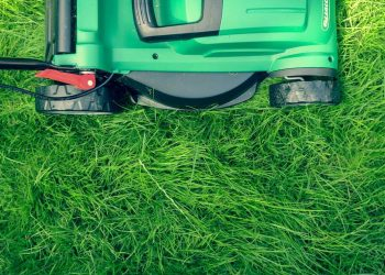 Lawn Care Basics – Utilizing Quality Lawn Maintenance Machines