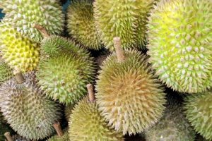 Why Tons of People Love Durian and Why You Should Love It Too